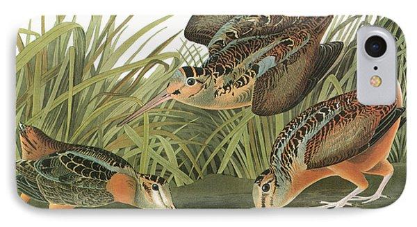 Audubon Woodcock IPhone Case by Granger