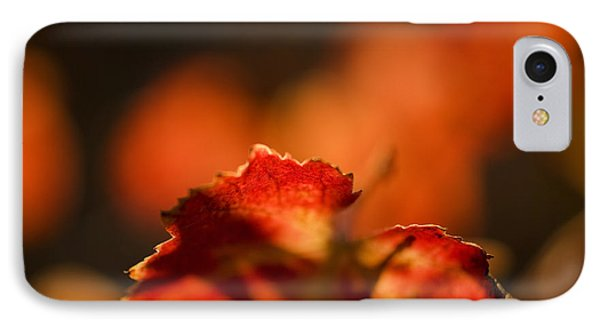 Autumn Grape Leaf Macro Phone Case by Charmian Vistaunet