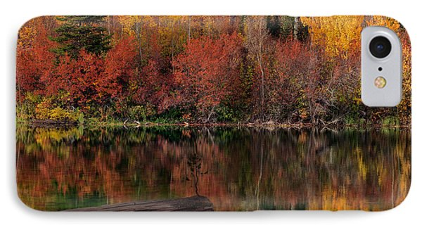 Autumn Reflections IPhone Case by Leland D Howard