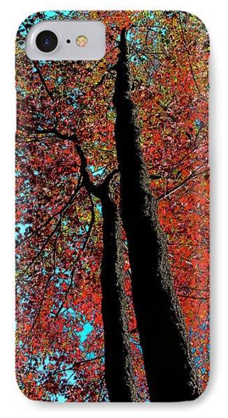 Autumn Splendor IPhone Case by David Patterson
