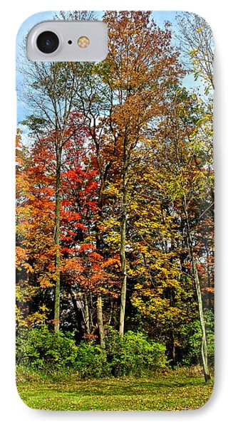 Autumnal Foliage Phone Case by Frozen in Time Fine Art Photography