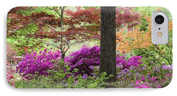 Azaleas And Japanese Maples At Azalea IPhone Case by Panoramic Images