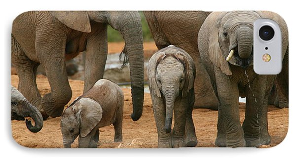 Baby African Elephants Phone Case by Bruce J Robinson