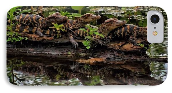 Baby Alligators Reflection IPhone 7 Case by Dan Sproul