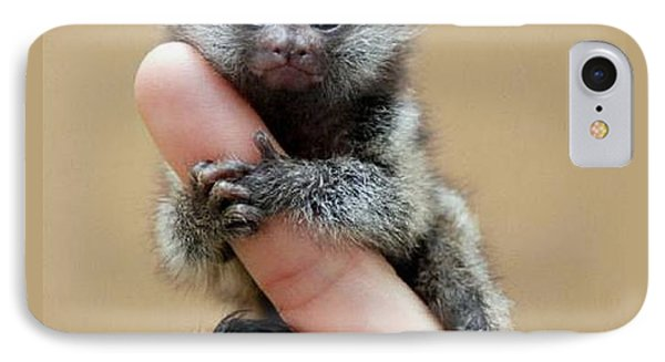 Baby Finger Monkey Tan Background IPhone Case by L Brown