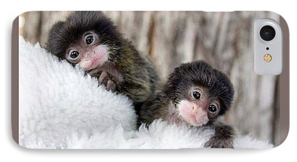 Baby Finger Monkeys Grey Border IPhone Case by L Brown