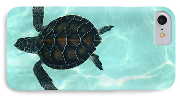 Baby Sea Turtle Phone Case by Ellen Henneke