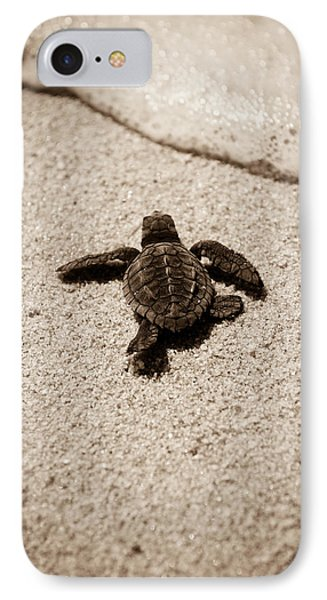 Baby Sea Turtle IPhone 7 Case by Sebastian Musial