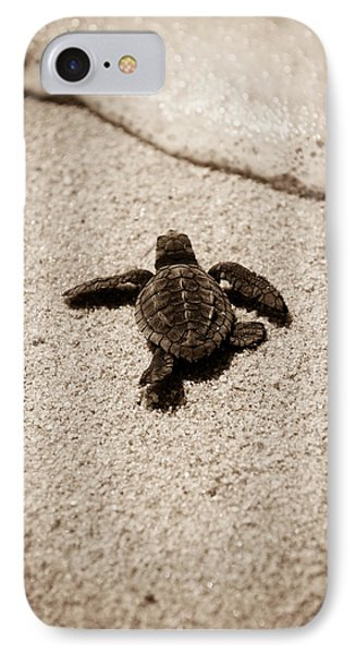 Baby Sea Turtle IPhone Case by Sebastian Musial