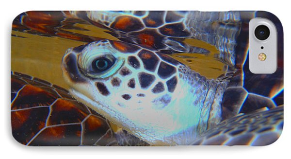 Baby Turtles IPhone Case by Carey Chen