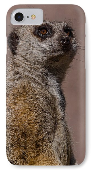 Bad Whisker Day IPhone 7 Case by Ernie Echols