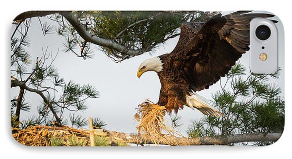 Bald Eagle Building Nest IPhone 7 Case by Everet Regal