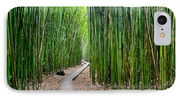 Bamboo Brilliance IPhone Case by Sean Davey