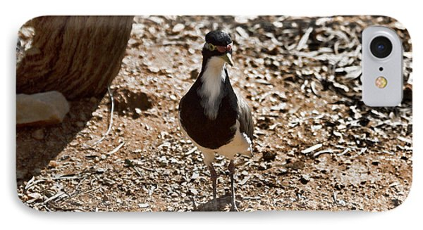 Banded Lapwing IPhone 7 Case by Douglas Barnard