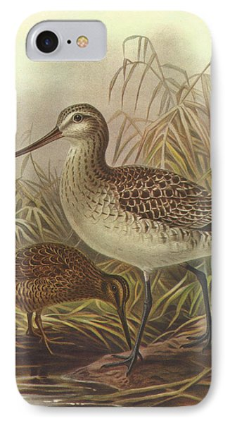 Bar Tailed Godwit And Chatham Island Snipe IPhone Case by J G Keulemans
