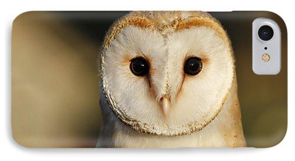 Barn Owl Beauty IPhone Case by Roeselien Raimond