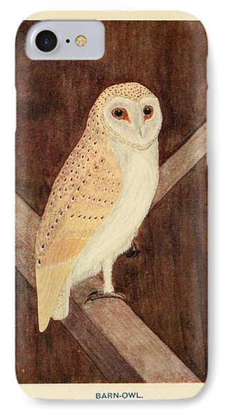 Barn Owl IPhone Case by Philip Ralley