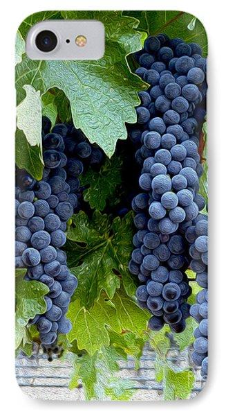 Beautiful Fruit IPhone Case by Jon Neidert