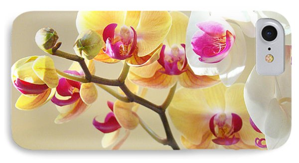 Beautiful Orchids Floral Art Prints Orchid Flowers IPhone 7 Case by Baslee Troutman