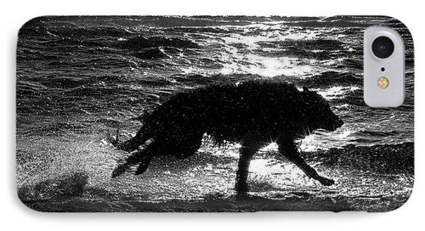 Belgian Shepherd Groenendael Running Along Sea Shore IPhone Case by Wolf Shadow  Photography