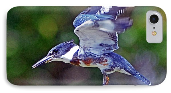 IPhone Case featuring the photograph Belted Kingfisher by Rodney Campbell