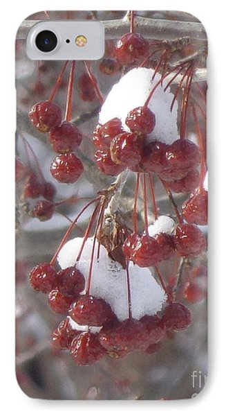Berry Basket IPhone Case by Christina Verdgeline