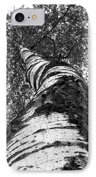 Birch Tree Phone Case by Tim Buisman