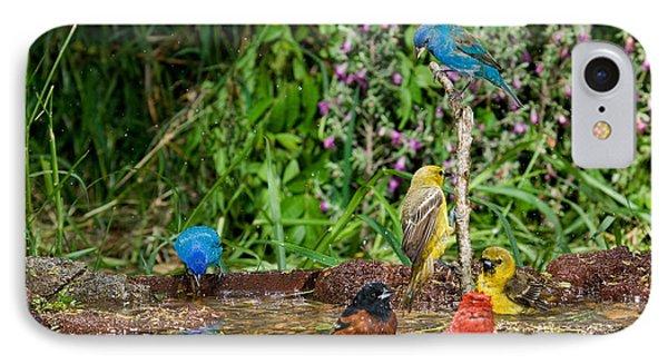 Birds Bathing IPhone Case by Anthony Mercieca