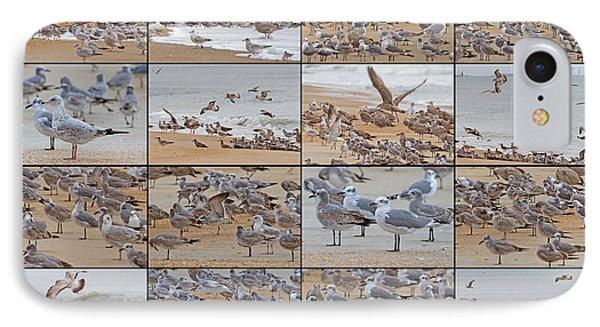 Birds Of Many Feathers IPhone 7 Case by Betsy Knapp