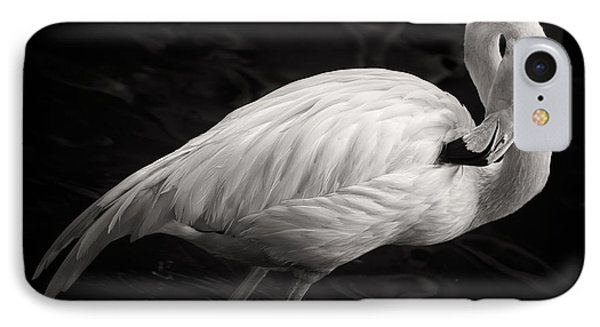 Black And White Flamingo IPhone Case by Adam Romanowicz