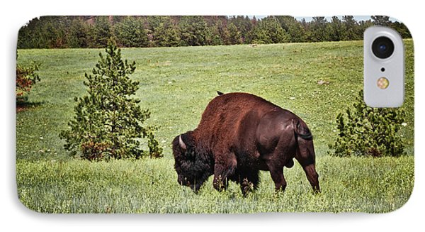 Black Hills Bull Bison Phone Case by Robert Frederick