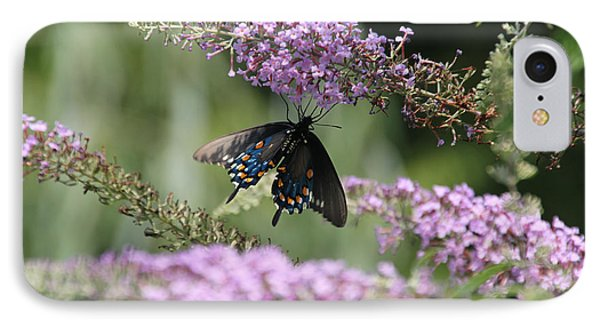 Black Swallowtail1-featured In Newbies-nature Wildlife- Digital Veil-comfortable Art Groups Groups Phone Case by EricaMaxine  Price