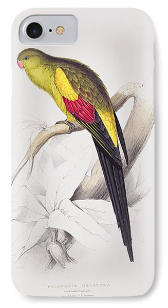 Black Tailed Parakeet IPhone Case by Edward Lear