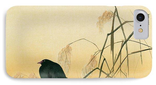 Blackbird IPhone Case by Japanese School
