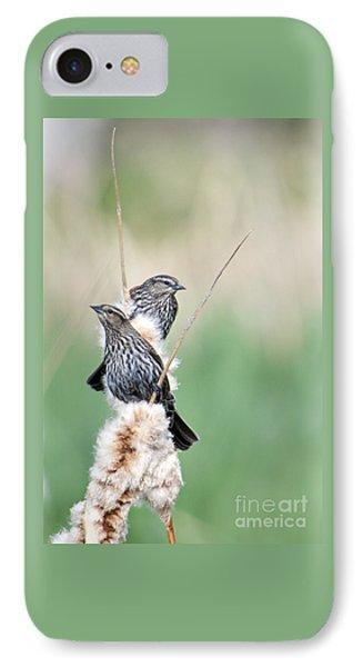 Blackbird Pair IPhone Case by Mike  Dawson