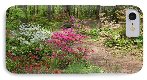 Blooming Azaleas At Azalea Path IPhone Case by Panoramic Images