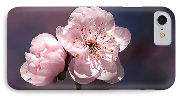 Blossom Phone Case by Joy Watson