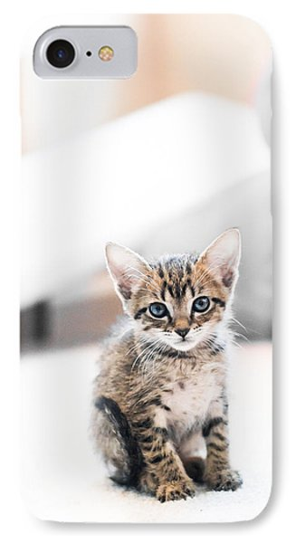 Blue Eyed Kitten IPhone Case by Shelby  Young