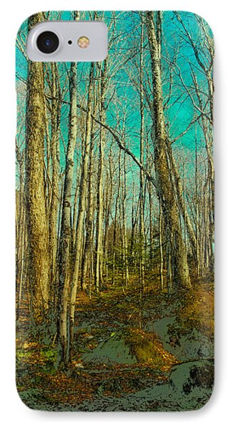 Blue Forest IPhone Case by David Patterson