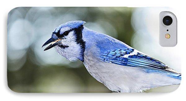 Blue Jay Bird IPhone 7 Case by Elena Elisseeva