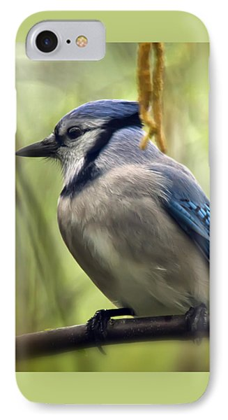 Blue Jay On A Misty Spring Day - Square Format IPhone Case by Lois Bryan