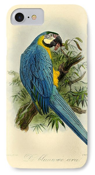 Blue Parrot IPhone Case by J G Keulemans