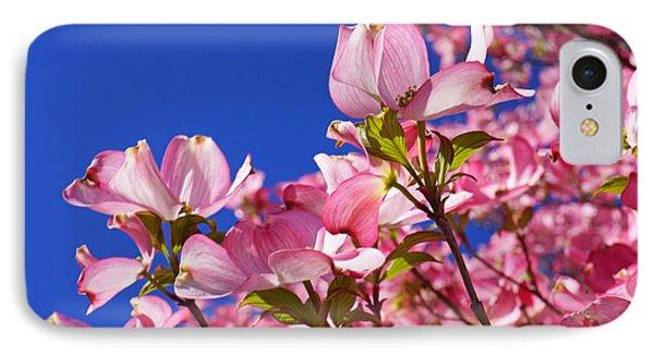 Blue Sky Art Prints Pink Dogwood Flowers Phone Case by Baslee Troutman