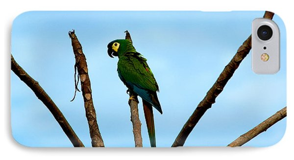 Blue-winged Macaw, Brazil IPhone 7 Case by Gregory G. Dimijian, M.D.