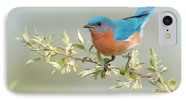 Bluebird Floral IPhone Case by William Jobes