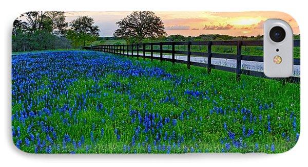 Bluebonnet Fields Forever Brenham Texas IPhone Case by Silvio Ligutti