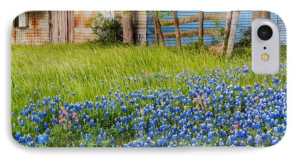 Bluebonnets Swaying Gently In The Wind - Brenham Texas IPhone Case by Silvio Ligutti