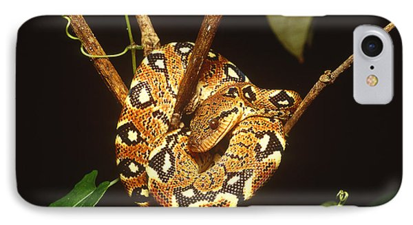 Boa Constrictor IPhone 7 Case by Art Wolfe