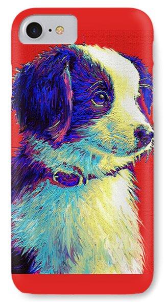 Border Collie Puppy Phone Case by Jane Schnetlage