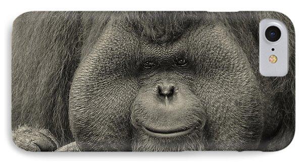 Bornean Orangutan II IPhone Case by Lourry Legarde